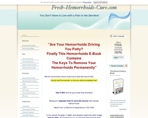 The Hemorrhoids e-Book